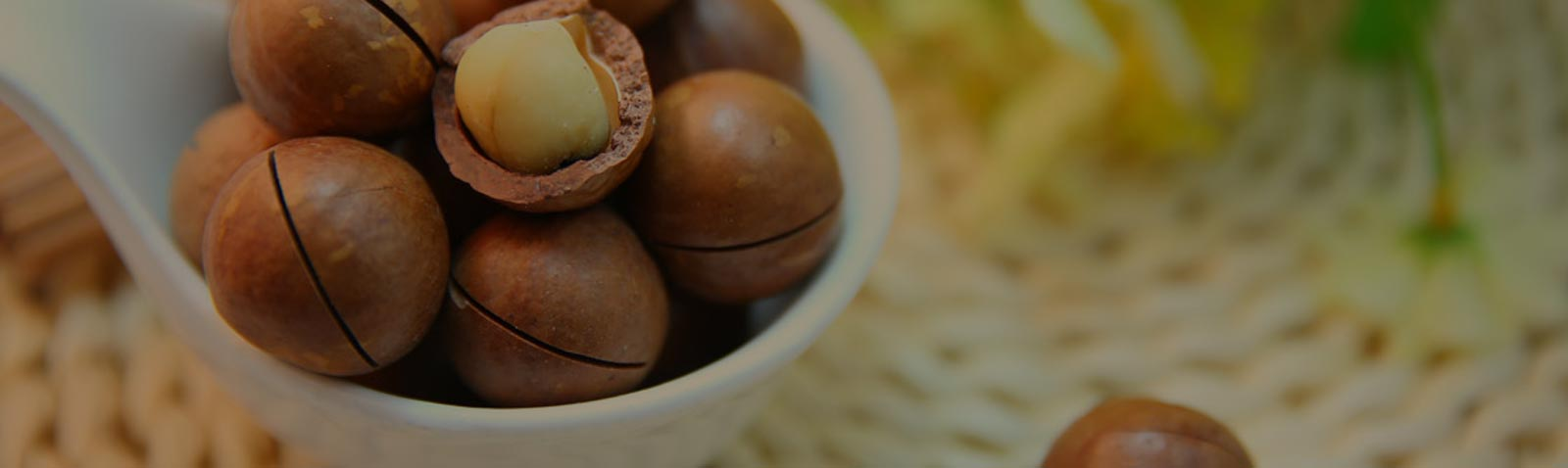 Macadamia Abbildung